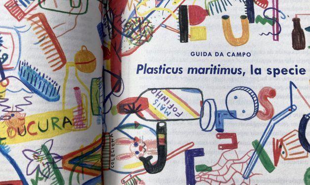 PLASTICUS MARITIMUS, UNA ESPECIE INVASORA.
